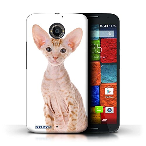 Kobalt® Imprimé Etui / Coque pour Motorola Moto X (2014) / Bleu britannique conception / Série Espèces de chats Peterbald