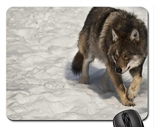 one scary looking wolf Mouse Pad, Mousepad (Dogs Mouse (Scary Wolf)