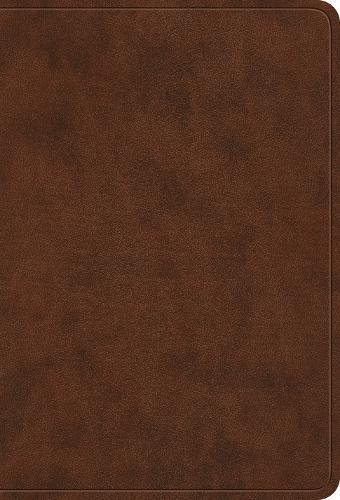 ESV Value Large Print Compact Bible (Trutone, Brown) (Esv Compact Large Print Bible)