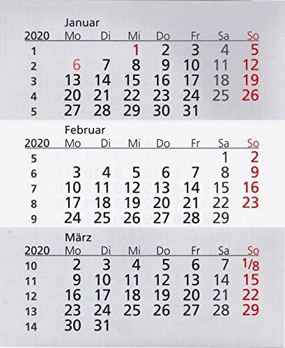 HiCuCo Kalendarium für 2 Jahre (2020 und 2021) passend für 3-Monats-Tischkalender TypW