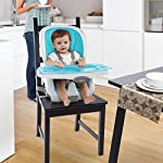 Product Thumbnail  Baby High Chairs 51zGj5f8zQL