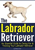 The Labrador Retriever: An Essential Guide to Caring For and Training Your Labrador Retriever  ( How to Train a Labrador Retriever | Labrador Training Tips )