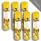 6 x HSM Lufterfrischer Duftspray Raumspray Raumerfrischer Vanille 300 ml