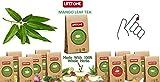Mango Blätter Grüner Tee,Fördert Immun,Körper Detox,100 Beutel,200g
