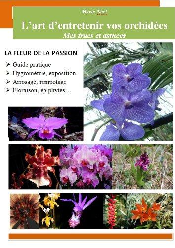 L'art d'entretenir vos orchides