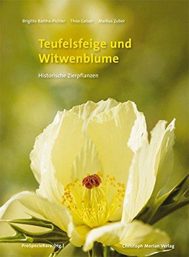 Teufelsfeige und Witwenblume: Historische Zierpflanzen