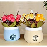 TIED RIBBONS Artificial Flowers With Pot For Office Table Living Room Bedroom Gift(Set Of 2)