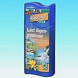 JBL - AlgoPond Forte 250ml Wasseraufbereiter gegen alle Algen im Gartenteich für 5000 Liter