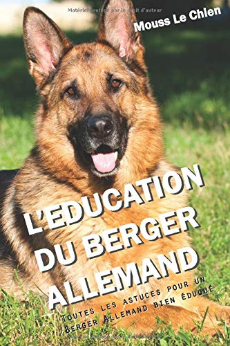 Le Berger Allemand Prix Caractère Alimentation Et éducation