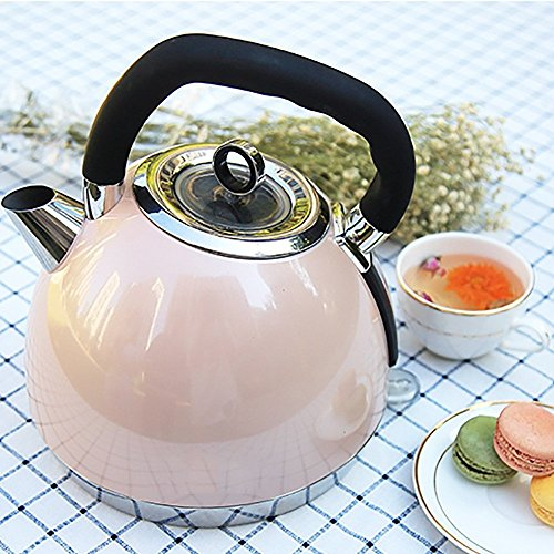 GPC Electric Kettle Home Tea Makers Tainless Steel Automatic Power off Kettle1.8Liters Pink/Blue(Size:Highth29*Width19.5Cm) Electric Kettles,A