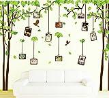 Rainbow Fox PVC cadre photo amovible arbre aux oiseaux mur papillon graphique art autocollant pour la...