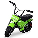 NEU Kinder Mini E-Bike Minibike Elektro Scooter 250 WATT Roller