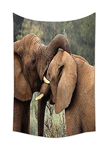 Safari Decor Collection dos salvaje sabana elefantes de lucha libre para naturaleza...