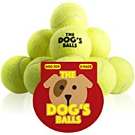 The Dog's Balls, Dog Tennis Balls, 12-Pack Yellow Dog Toy, Premium Strong Dog & Puppy Tennis Ball