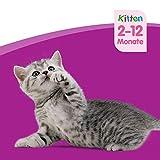 Whiskas Katzenfutter Junior für junge heranwachsende Katzen, 48 Portionsbeutel, (4 x 12 x 100 g) - 7