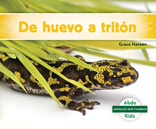 De huevo a tritón / Becoming a Newt (Animales Que Cambian) por Grace Hansen