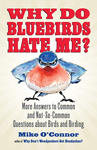 Why Do Bluebirds Hate Me?: More Answers to Common and Not-So-Common Questions about Birds and Birding - Snowy Egret Tiere