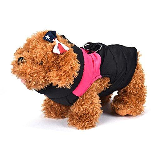 Pets Westen, Transer® Haustier Kleidung Katze Hunde/outwears Small Medium Hunde Puffer Puffa Weste Stepp Winter Coat Geschirr Jacke Puppy Kostüm (Halloween Haustier Niedliche Bilder)