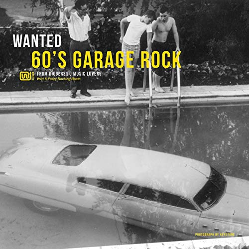 Wanted 60\'S Garage Rock [Vinyl LP]