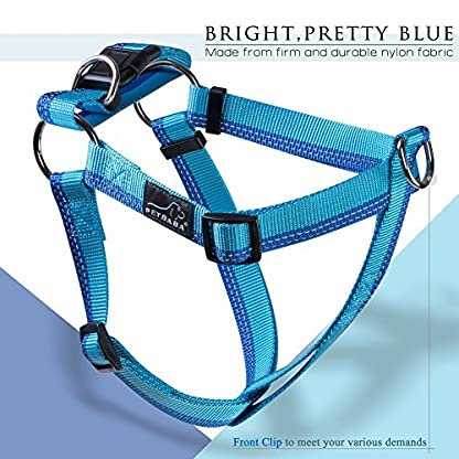 PETBABA No Pull Dog Harness, Front Clip Give Pet Choke Free Walking, Reflective Safety at Night, Step-in Vest with… 8