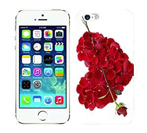 Wow 3D Printed Designer Mobile Case Back Cover for Apple iPhone 5/iPhone 5/iPhone 5s/I 5s