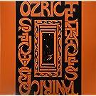 Tantric Obstacles [Vinyl LP]