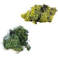 inerra Finnland Moos - Packung zu 2 gemischte Farben 25g Bags - Rentier Moos Handwerk Pflanzen Töpfe Blumen Display... preisvergleich bei billige-tabletten.eu
