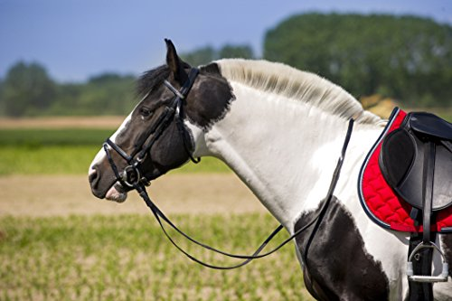 norton-synthetic-bridle-black-rubber-reins-cob