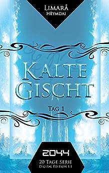 Kalte Gischt (Fantasy- Thriller Buchreihe): 2044 - Tag 1 von [Hèymdai, Limarå]