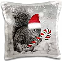 Doreen Erhardt Christmas - This cute Christmas squirrel has a candy cane and a Santa hat in the snow covered winter landscape. - 16x16 inch Pillow Case (pc_150177_1)