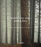 Promenons-nous dans le bois