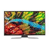 MEDION P14901 123,2 cm (49 Zoll) Full HD Fernseher (Smart-TV, HD Triple Tuner, DVB-T2 HD, Netflix, WLAN, DTS Sound, PVR, Bluetooth)