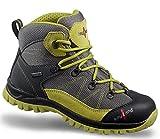 Kayland Shoes Cobra K JR GTX Grey-Lime-38