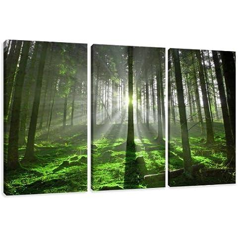 Cuadros en Lienzo naturaleza 160 x 90 cm modelo Nr. 1130 XXL Las imágenes estan listas, enmarcadas en marcos de Madera auténtica. El diseño de la impresión artística como un Mural