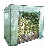 Gutgojo Gewächshaus für Tomaten foliengewächshaus Anzuchthaus Treibhaus mit PE Gitterfolie