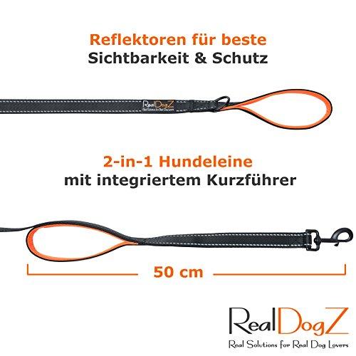 2m Hundeleine für grosse Hunde – Reflektierende Nylon Führleine - 3