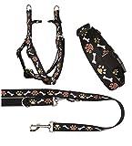 Ein Set - Halsband, Hundegeschirr Step-In, Hundeleine - verstellbar, Zugentlastung, stabil, bequem, weich, Farbe Schwarz - TX-ZOO/Zd-BLACK