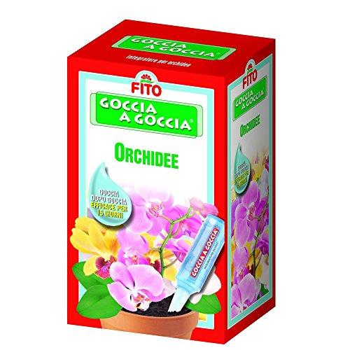 guaber-760600-goccia-a-goccia-orchidee
