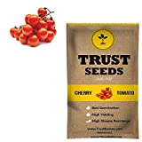 Best Tomato Plants - Trust basket Cherry tomato Vegetable Seeds (GMO Free) Review