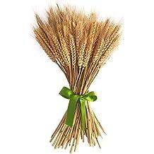 100piezas de color blanco/Beige flores ramo de oído de trigo naturales secas flores secas arreglos decoración del hogar L45cm beige