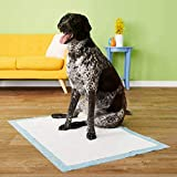 90x60cm 60pcs Dog Training Pads XL Size/Training Pee and Potty Pads with Quick Drying Surface and Absorbent Core/Suitable for