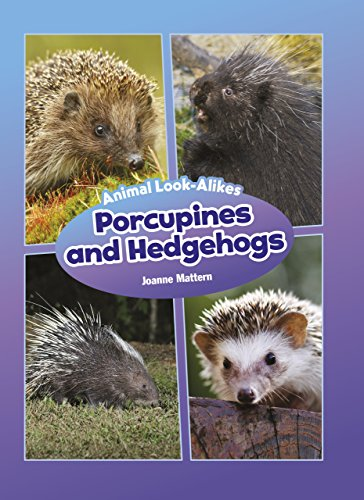 Porcupines and Hedgehogs (Core Content Science — Animal Look-Alikes)