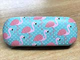 Sass & Belle Tropical Summer Flamingo Glasses Case