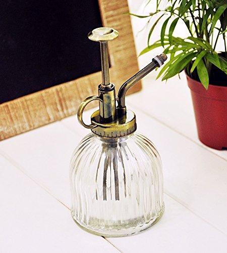 Glas-spray-flaschen (e-meoly Vintage klar Glas Wasser Spray Flasche/Dekorative Pflanze Mister mit Top Pumpe farblos)