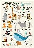 Poster 50 x 70 cm: Das Tieralphabet von Sandy Lohß - hochwertiger Kunstdruck, Kunstposter