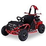 Kinder GoKart Kinderbuggy SQ80GK-2 80cc Buggy mit Netz in rot