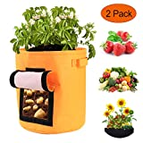 Kartoffel Pflanzsack, Pflanztasche aus Doppelschichtig Vliesstoff - Pflanze Wachsende Tasche 2 Stück 46 L/12 Gallon Garten Gemüse Übertopf (Orange)