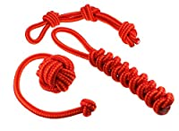 Dog toy set, ideal for playing, raving, working to capacity and cleaning of teeth for small to medium-sized dogs and puppies made of knotted PPM rope, rope+throwing ball+dummy in orange/red.