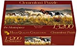 Clementoni 38006.0 Jigsaw Puzzle with 'Band of Thunder' Design 13200-Piece by Clementoni