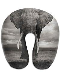Nackenkissen Elefant.Suchergebnis Auf Amazon De Fur Nackenkissen Elefant Koffer